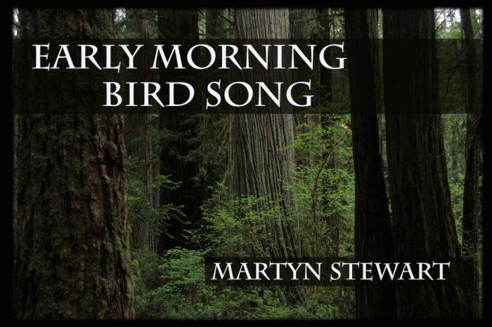 Early norning bird song banner